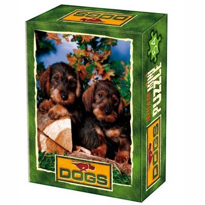 DToys-50199-DG07 Mini Puzzle - Fotopause
