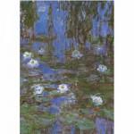 Puzzle  DToys-67548-CM06 Monet: Nymphéas