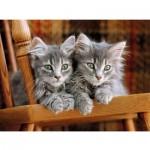 Puzzle  Clementoni-30545 Kätzchen