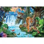 Puzzle  Clementoni-31636 Tigerfamilie
