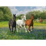 Puzzle  Clementoni-39255 Pferde