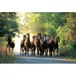 Puzzle  Trefl-10168 Pferde im Wald