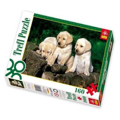 Puzzle Trefl-15157 Kleine Labradore