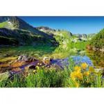 Puzzle  Trefl-26089 Der große Teich, Tatragebirge
