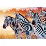 Puzzle  Trefl-26129 Zebras