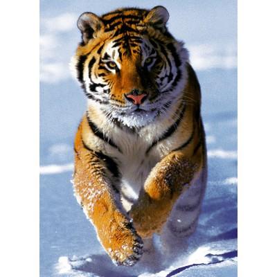 Puzzle Trefl-37009 Tiger im Schnee