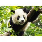 Puzzle  Trefl-37142 Panda
