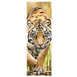 Puzzle  Trefl-75002 Tiger