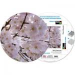 Pigment-and-Hue-RCHRY-41228 Fertiges Rundpuzzle - Kirschblüten