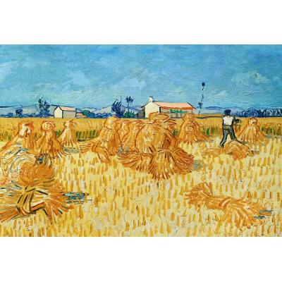 Puzzle Grafika-Kids-00022 XXL Teile - Vincent Van Gogh, 1888