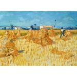 Puzzle  Grafika-Kids-00023 Vincent van Gogh, 1888