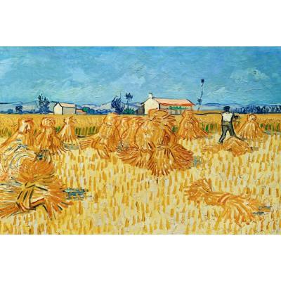 Puzzle Grafika-Kids-00024 Vincent van Gogh, 1888