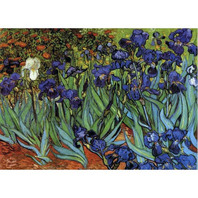 Puzzle Grafika-Kids-00062 Vincent van Gogh, 1889