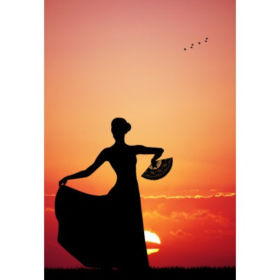 Puzzle Grafika-Kids-00393 XXL Teile - Flamenco at Sunset