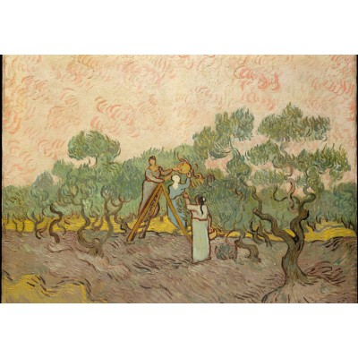 Puzzle Grafika-Kids-00444 Van Gogh: Women Picking Olives,1889