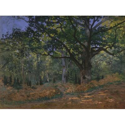 Puzzle Grafika-Kids-00472 Claude Monet: Fontainebleau, 1865