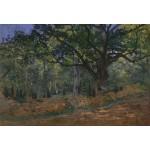 Puzzle  Grafika-Kids-00475 XXL Teile - Claude Monet: Fontainebleau, 1865
