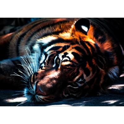 Puzzle Grafika-Kids-00964 Magnetische Teile - Tiger