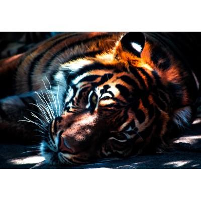 Puzzle Grafika-Kids-00965 XXL Teile - Tiger