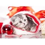 Puzzle  Grafika-Kids-01130 Weihnachtskätzchen