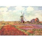 Puzzle  Grafika-00053 Claude Monet: Tulipes des Pays-Bas, 1872
