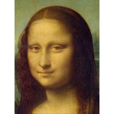 Puzzle Grafika-00124 Leonardo da Vinci, 1503-1506