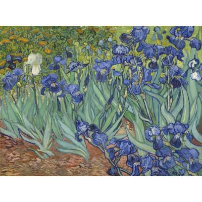 Puzzle Grafika-00751 Vincent van Gogh, 1889