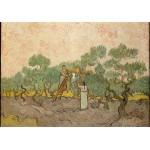Puzzle  Grafika-00863 Van Gogh: Women Picking Olives,1889