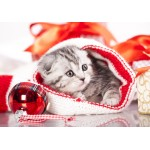Puzzle  Grafika-01051 Weihnachtskätzchen