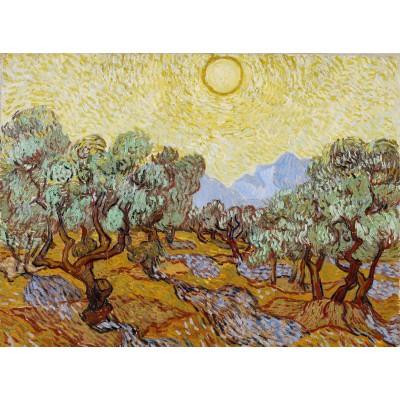 Puzzle Grafika-01173 Vincent van Gogh: Olivenbäume, 1889