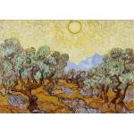 Puzzle  Grafika-01174 Vincent van Gogh: Olivenbäume, 1889