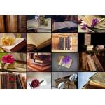 Puzzle  Grafika-01403 Collage - Bücher