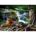 Puzzle  Grafika-01560 Tiger