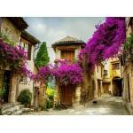 Puzzle  Grafika-01573 Provence, Frankreich