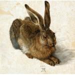 Puzzle  Grafika-01710 Albrecht Dürer - Der Hase, 1502