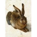 Puzzle  Grafika-01711 Albrecht Dürer - Der Hase, 1502