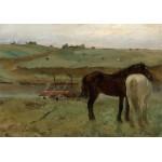 Puzzle  Grafika-01769 Edgar Degas: Horses in a Meadow, 1871