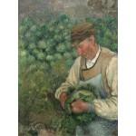 Puzzle  Grafika-02021 Camille Pissarro: The Gardener - Old Peasant with Cabbage, 1883-1895