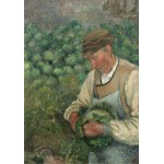 Puzzle  Grafika-02022 Camille Pissarro: The Gardener - Old Peasant with Cabbage, 1883-1895