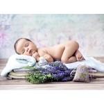 Puzzle   Konrad Bak: Baby Lavender