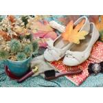 Puzzle   Vintage Dancing Shoes