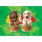 Puzzle  KS-Games-11239 My Best Pets