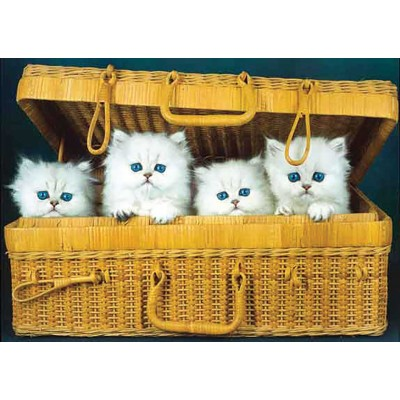 Puzzle KS-Games-11244 Cats in the Box
