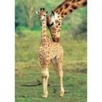Puzzle  KS-Games-11250 Giraffen