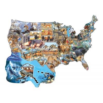 Cynthie Fisher - Wild America - 600 Teile - SUNSOUT Puzzle online kaufen