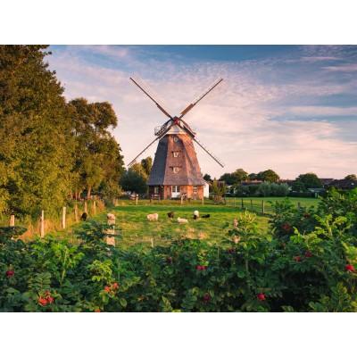 Puzzel Bauwerk Windmühle 45 Teile Holland Windmill CubicFun 3D Puzzle