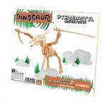 Professor-Puzzle-DC1158 3D Puzzle aus Holz - Pterodactylus