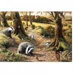 Puzzle   Badgers Dell
