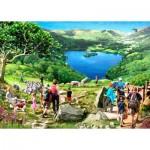 Puzzle   Lake View