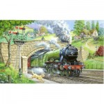 Puzzle  The-House-of-Puzzles-1448 XXL Teile - Train Spotting